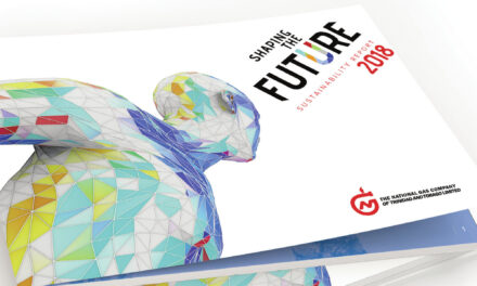 Sustainability Reporting—Embracing a Culture of Transparency